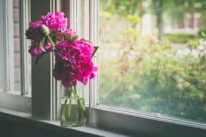 beautiful-flowers-home-pink-favim-com-4782363